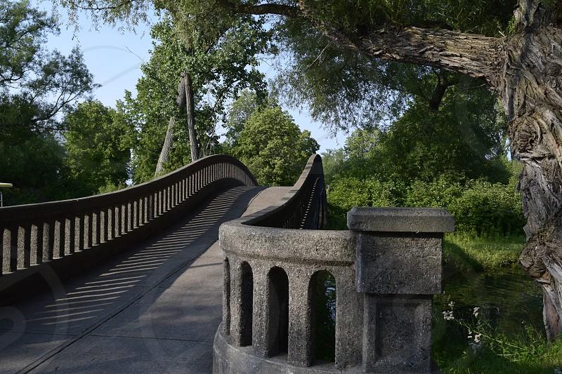 park bridge photo