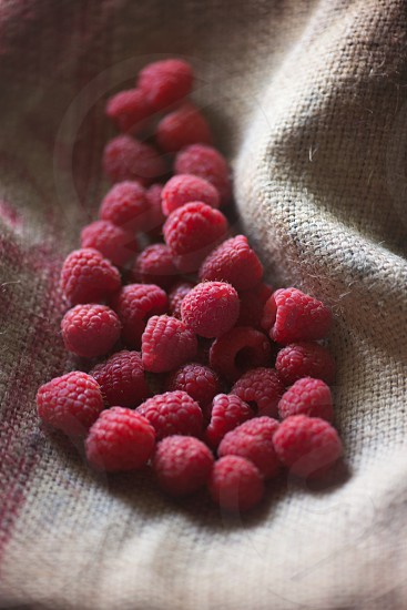 Rasberries photo