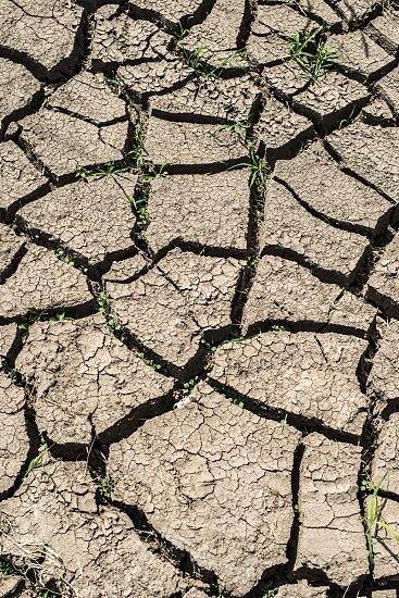 Cracked soil background photo