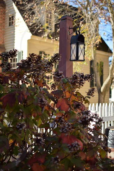 Love the start of fall colors- Colonial Williamsburg photo