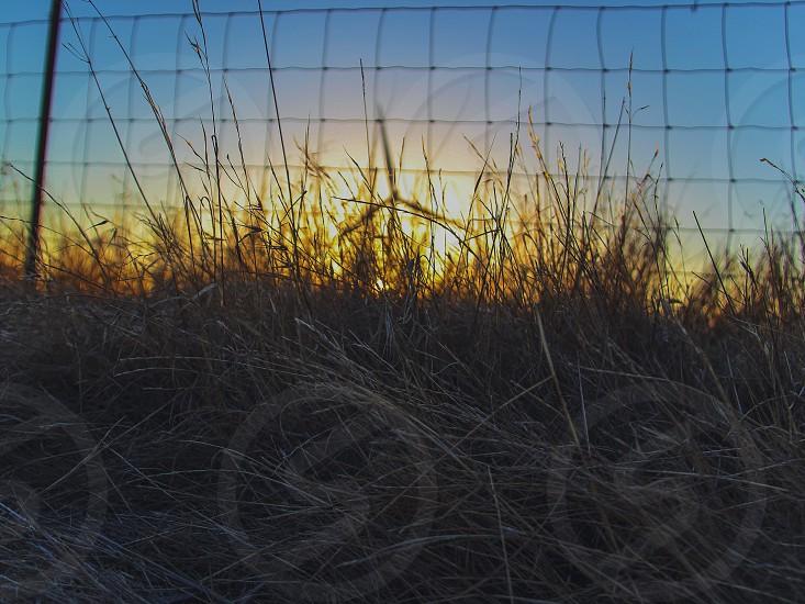 cyclone wire photo