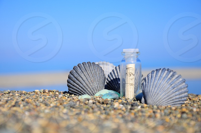 clear small bottle with music note inside surrounded by grey sea clam shell on sand photo