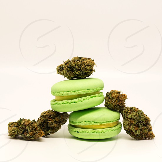 phtography green french macarons photo