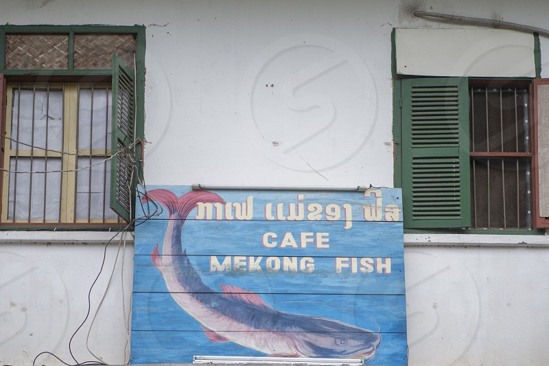 the cafe mekong fish in the town of Luang Prabang in the north of Laos in Southeastasia. photo