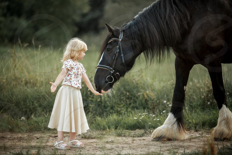 Little sisters on horse at summer evening  photo