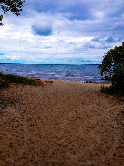 brown sandy beach with green grass photo