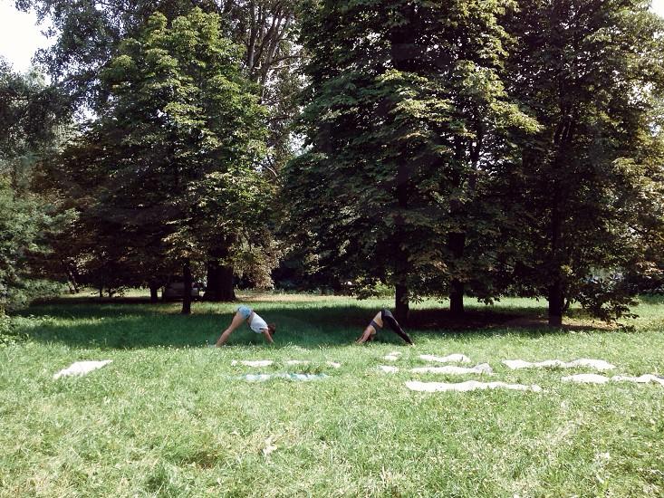 2 women doing yoga under tree shade photo