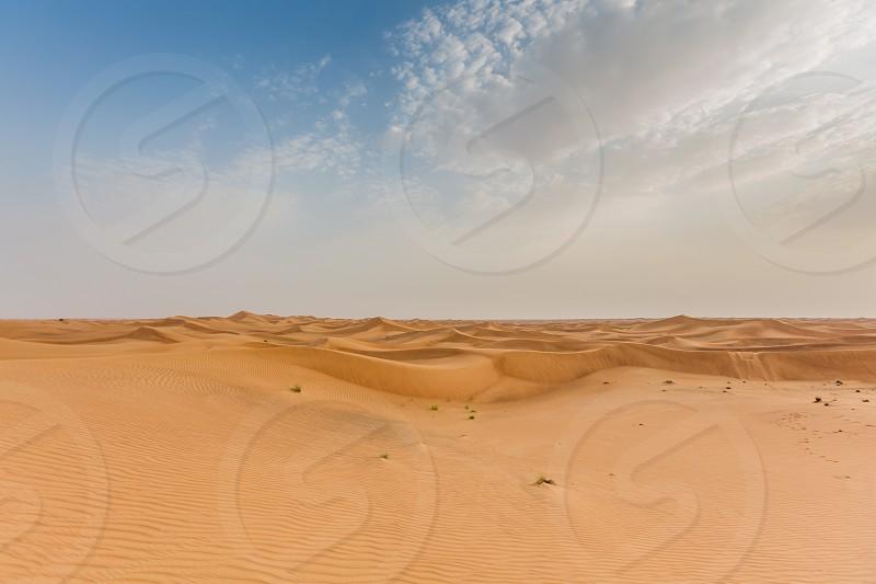 Desert in UAE photo