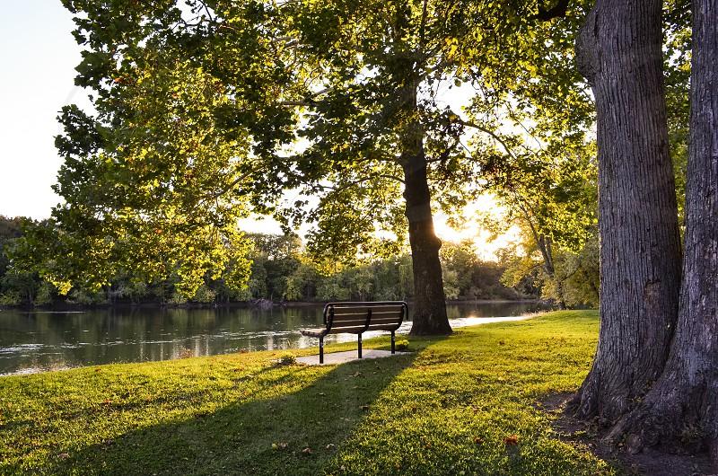High resolution park bench nature natural light photo