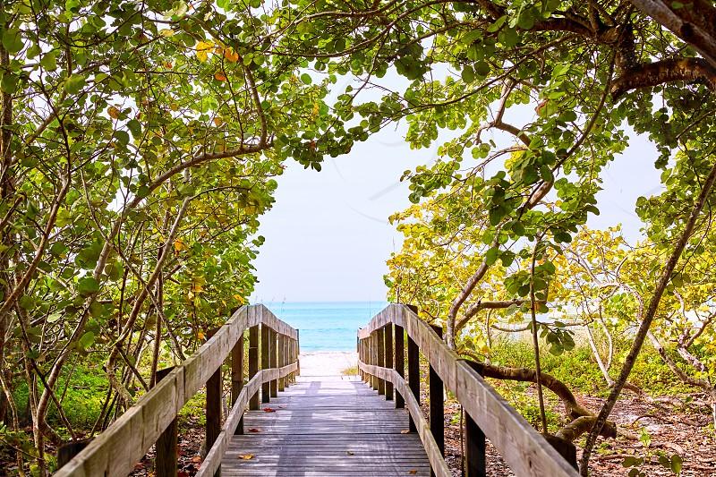 Florida bonita Bay Barefoot beach walk way in USA photo