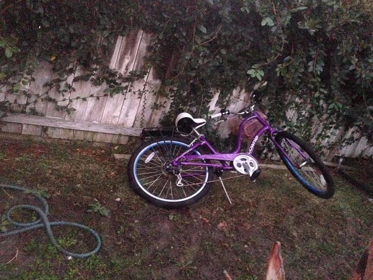 purple cruiser bicycle photo