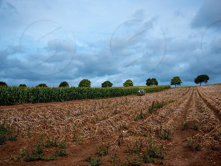 Farmers field in devon photo