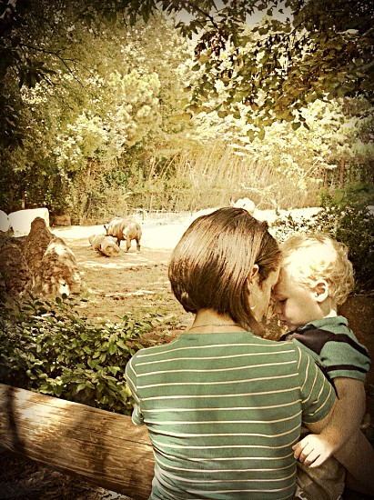 woman holding a baby next to a zoo exhibit photo