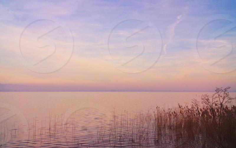 Sunset lake landscape nature pastel pink  photo