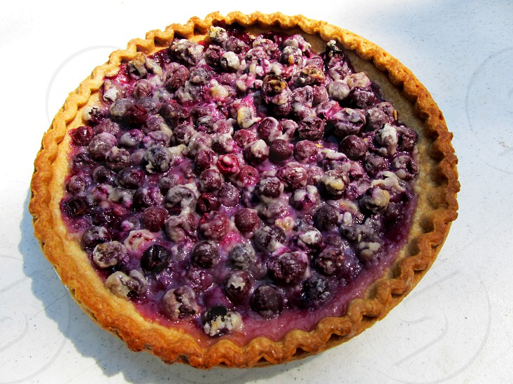Purple grape pie whole pie on white photo