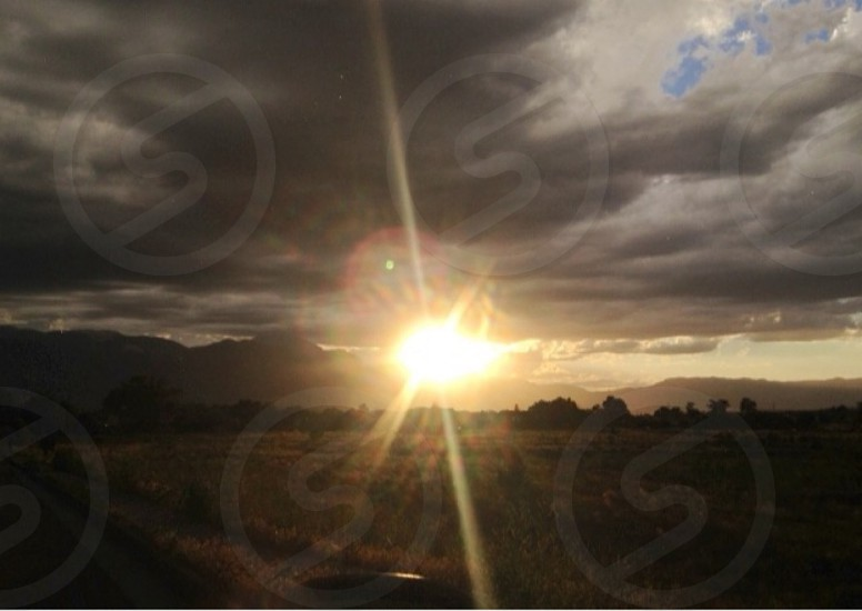 Shine Bright Golden Evening Light photo