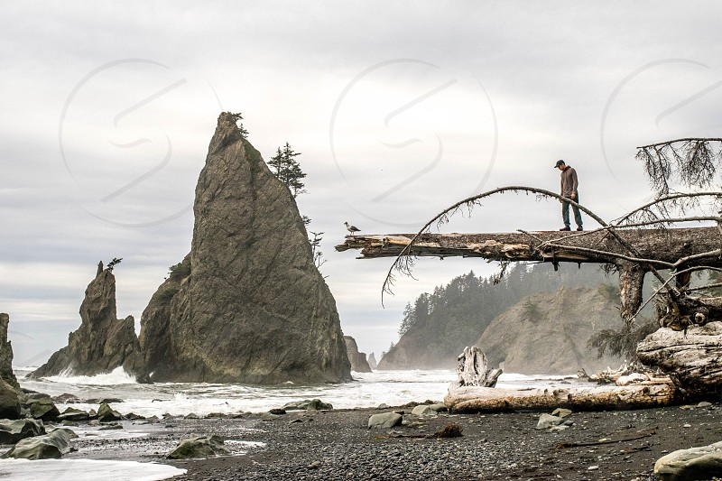 Walking along the coast at the Olympic National Park in Washington state.  photo