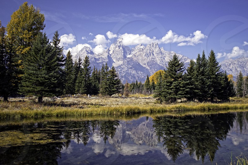 Grand Tetons WY photo