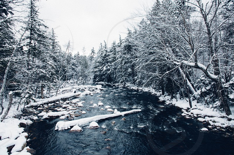 Adirondack Forest Preserve December 2014.  photo