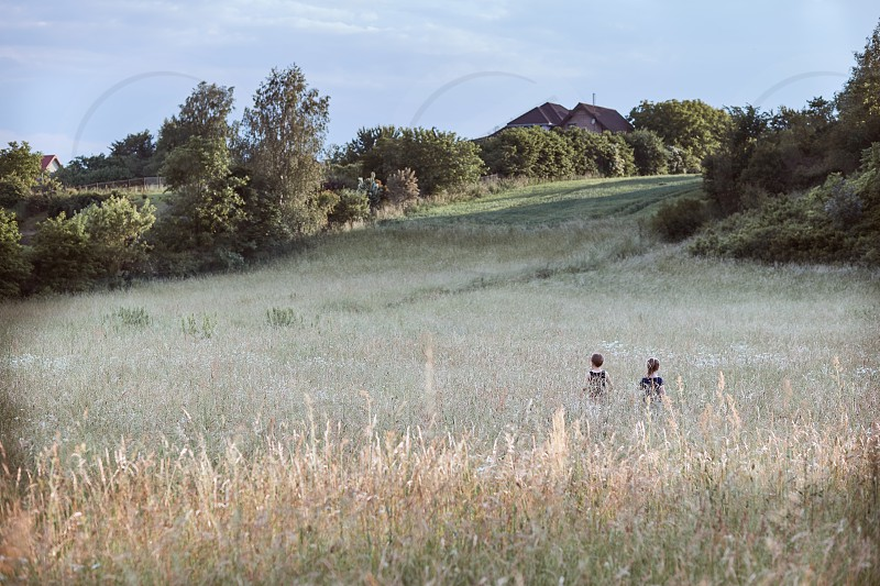 Little happy kids playing in a tall grass in the countryside. Candid people real moments authentic situations photo