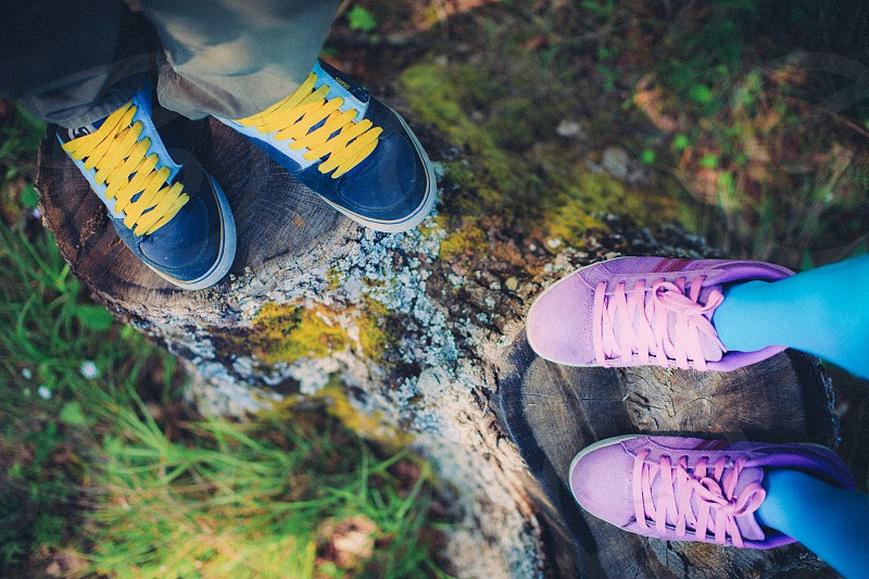 couple love feet sneakers forest tree stump moss grass photo