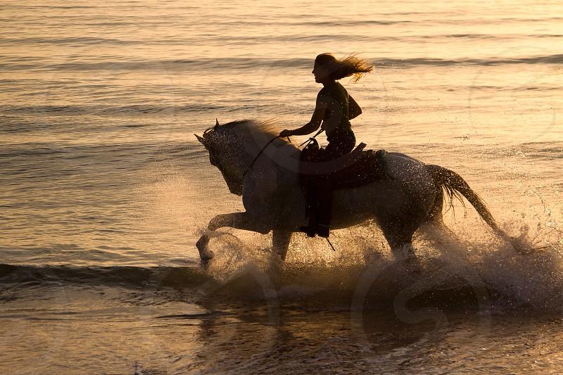 Woman on horseback splashing through the water at the beach at sunrise photo