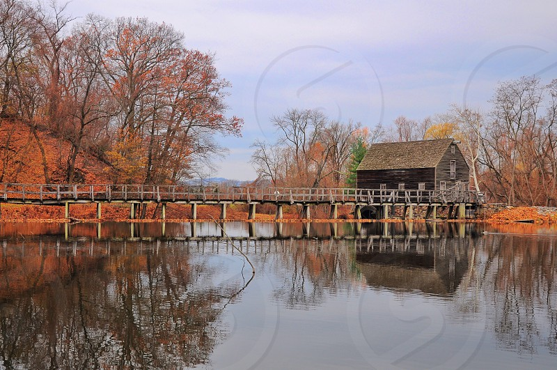 gray wooden barn in the woods photo