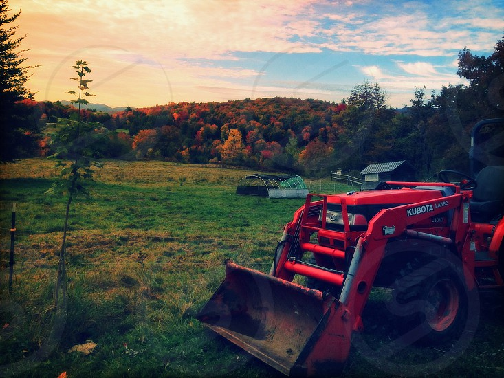 Sunday is a day of rest - even on the farm... photo