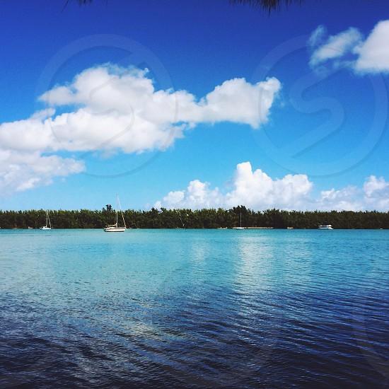 Miami FL photo