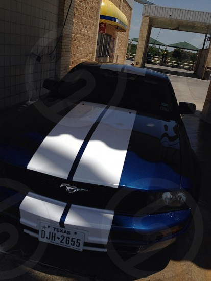 2007 Mustang photo