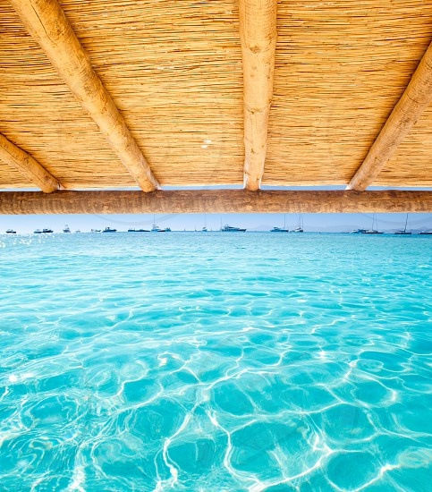 Cane sunroof with tropical perfect beach of Illetes Formentera island photo