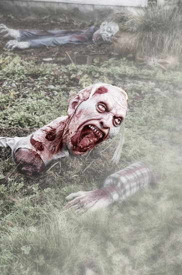 Halloween dead zombie walking dead blood photo
