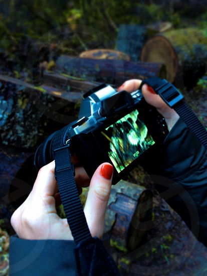 person holding black digital single lense camera photo