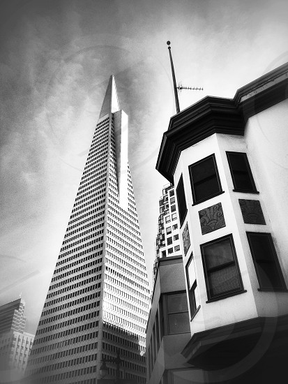 San Francisco Transamerica Pyramid perspective grayscale photo