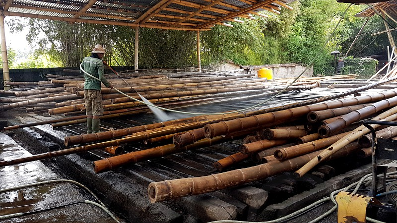 cleaning of boron from bamboos in bamboo factory photo