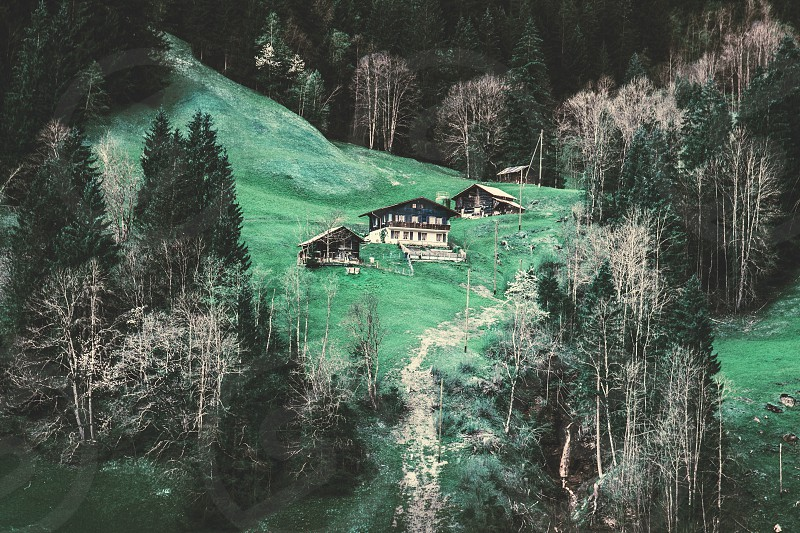 Grindelwald Switzerland photo