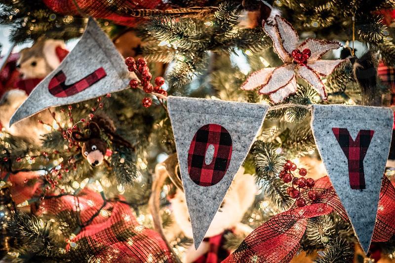 Joy Christmas Christmas tree lights berries ornaments banner photo
