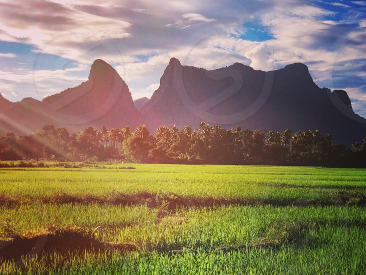 Limestone mountain and rice paddy field in Vang Vieng Lao PDR. photo