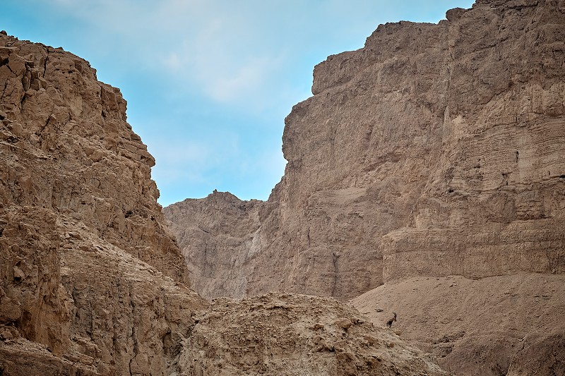 Negev in the Dead Sea area photo