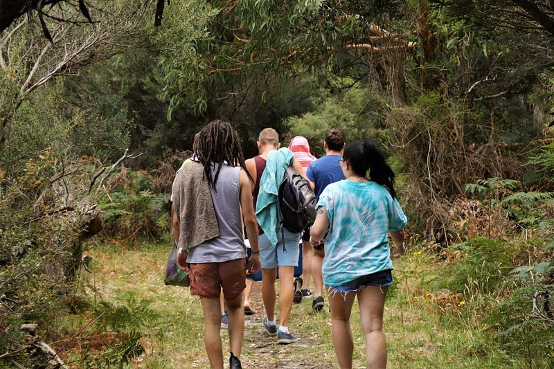 group of friends walking through the trees towards the beach photo