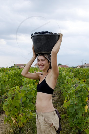Young woman carries a bucket full of grapes on her head photo