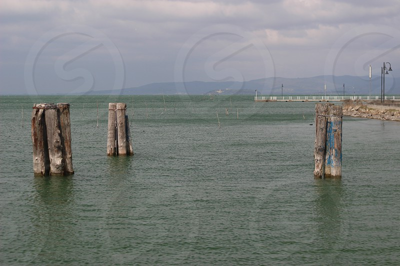 wooden post in body of water during daytime photo