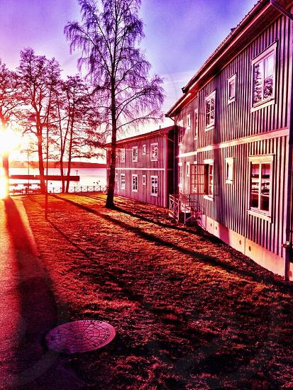 Beautiful sunrise Sweden photo