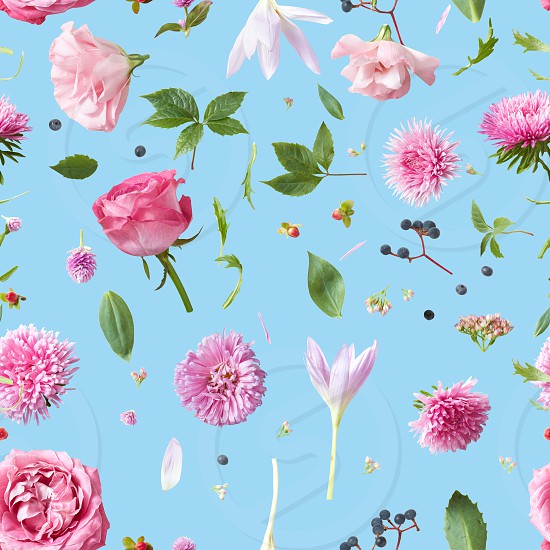 Elegance Seamless wallpaper pattern with of pink flowers on blue background photo