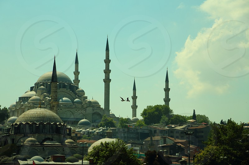 new mosque istanbul photo