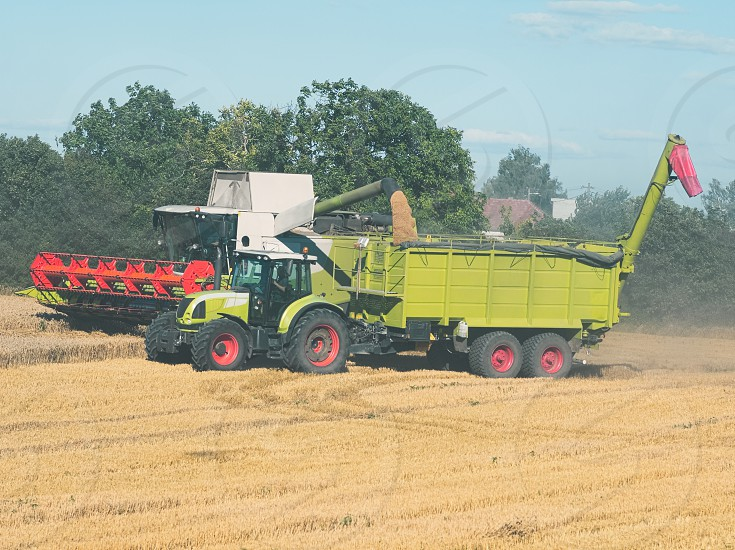 Combine Harvester Unloading Grain into Tractor Trailer on a Sunny Summer Day photo