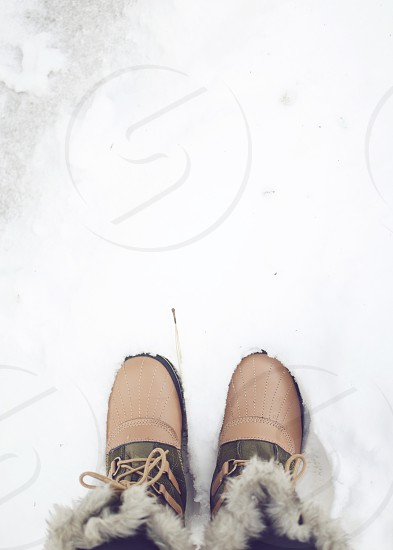 Stepping in the snow photo