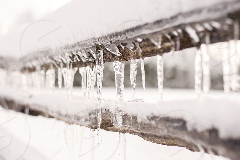 Row of icicles on a fence in winter. photo