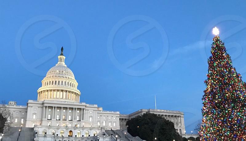 Washington D.C. Christmas usa DC capital christmas  photo