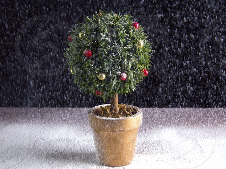 christmas snow treered green white winter decorations miniature tree baubles snowing photo